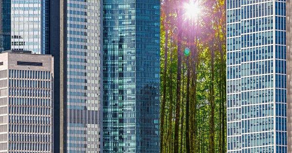 Neue EU Offenlegungsverordnung 2019/2088 zur Nachhaltigkeit im Finanzbereich