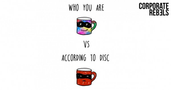 DISC And MBTI SUCK — Except For One Thing